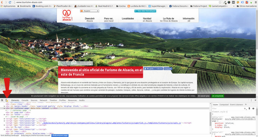 Prueba web responsive Chrome